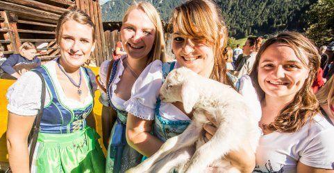 Alpsommer endgültig zu Ende: Schafscheid 2014 in Gaschurn