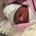 Geburt von Pia Wolf am 28. Jänner 2016