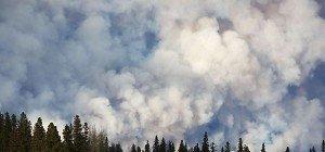 Dramatische Ausmaße durch Waldbrände in Kanada