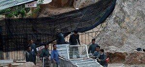"""Tiere werden aus """"Tiger-Tempel"""" in Thailand geholt"""