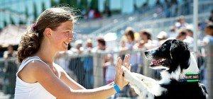 Hundetag auf der Trabrennbahn Baden: Spaß für Vierbeiner und Hundehalter