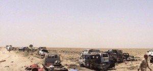 250 IS-Terroristen bei Luftangriffen nahe Falluja getötet
