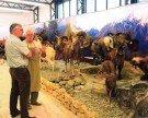Besichtigung des privaten Jagdmuseums in Höchst