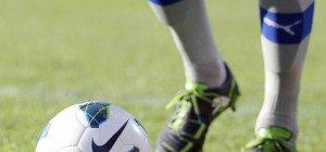 LIVE: SV Horn gegen SC Wiener Neustadt im Erste Liga-Ticker