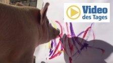 In diesem Schwein steckt ein wahrer Künstler