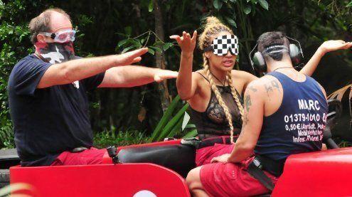 Dschungel: Flirts, Streikdrohung und Zusammenlegung der Teams
