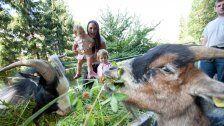 Kult seit 1963: Der Doppelmayr-Zoo