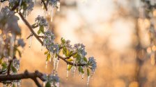Trotz mildem Auftakt - Kühlster April seit 2008