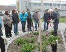Rosenschnittkurs des Obst- und Gartenbauverein Wolfurt