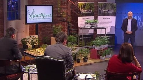 Plants4Friends: Hanf-Startupwill insgesamt 250.000 Euro