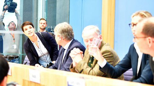 AfD-Chefin Petry verlässt Fraktion - Eklat bei Pressekonferenz
