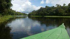 Britische Abenteuerinam Amazonas ermordet